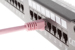 CAT6 Ethernet Patch Cable, Booted, 1ft, Pink