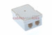 RJ11 Double Port Surface Mount Jack White