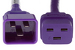 AC power cord, C20 to C19, 12 AWG, 6', Purple