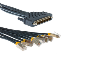 Cisco 8 Lead Octal Cable, 10', CAB-OCTAL-ASYNC-10