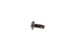 "Great Lakes 12-24 x 1/2"" Rack Screws, Black, Qty 50"